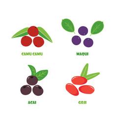camu camu maqui acai and goji berries vector image