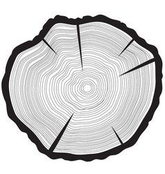 tree rings background annual tree vector image