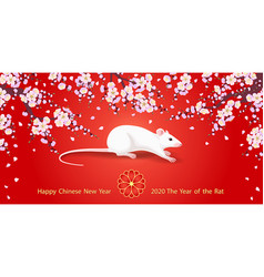 chinese new year rat 2020 greeting card vector image