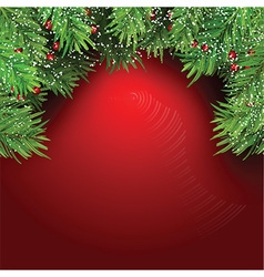 christmas background with fir tree branches and vector image vector image