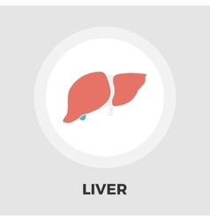 Liver flat icon vector image