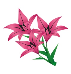 Bouquet of origami flower lily vector image