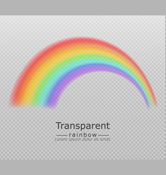 Colorful rainbow realistic transparent vector