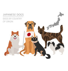 Dogs by country of origin japanese dog breeds vector