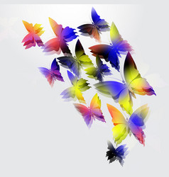 glowing butterflies on white background abstract vector image