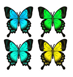 set four beautiful butterfly insect isolated vector image