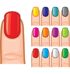 Set of nail polish in different colors vector