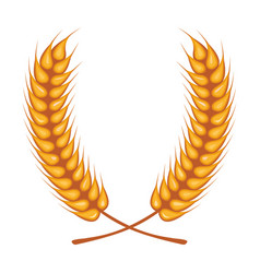 Wheat spikes crown decoration isolated icon vector