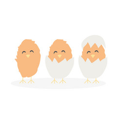 Cartoon cute easter baby chikens hatched from egg vector