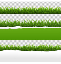 Green grass and ripped paper transparent vector