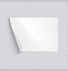 Horizontal white sheet of paper on transparent vector