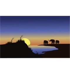 Silhouette family elephants at the sunset vector image