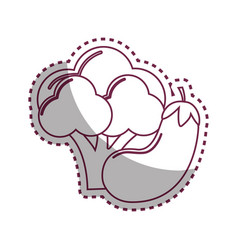 Sticker silhouette broccoli and eggplant vegetable vector