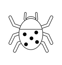 Wonderful ladybug insect vector