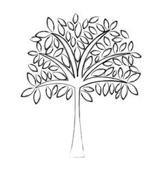 sketch draw tree cartoon vector image vector image
