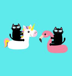 black cat floating on white flamingo unicorn pool vector image