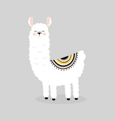 cute llama isolated vector image