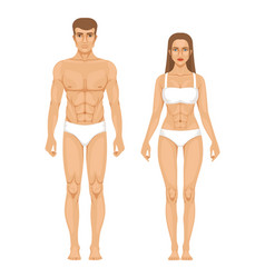 Model of sporty man and woman standing front view vector