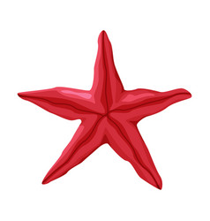 Starfish as travel and tourism attribute vector