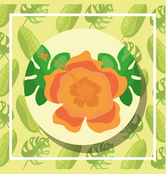 tropical leaves round banner hibiscus flower vector image