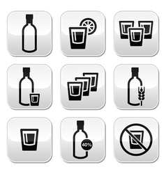 Vodka strong alcohol buttons set vector image vector image