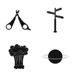 Cosmos veterinary and or web icon in black style vector