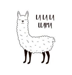 cute llama isolated vector image