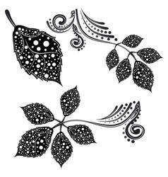 Decorative Leaf Silhouette vector