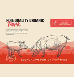 fine quality organic pork abstract meat vector image