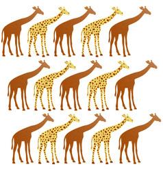 Giraffes funny vector