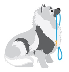 Keeshond Leash vector