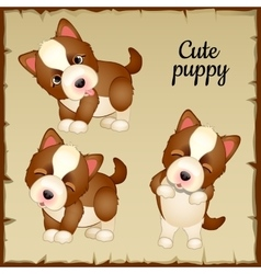 Three cute puppies expressions of emotions vector