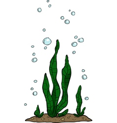 Water plant vector