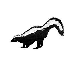 cute skunk in flat style isolated on white vector image