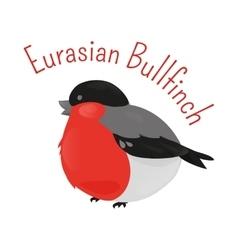 Eurasian cartoon bullfinch isolated on white vector image vector image