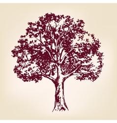Tree hand drawn llustration sketch vector image