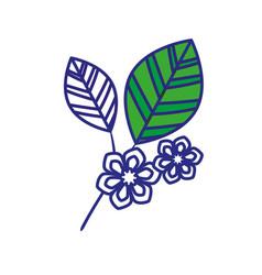 Leaf natural ecology vector