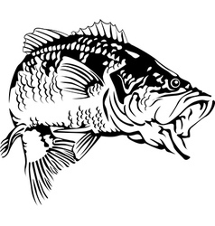 Black Bass vector