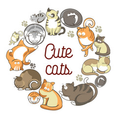 Cute cats with fluffy fur that lies in circle vector