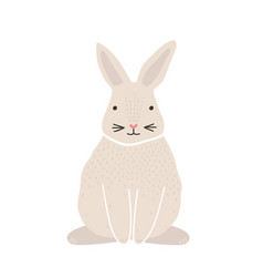 cute lovely pretty white bunny rabbit or hare vector image