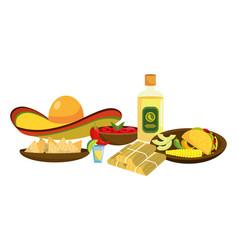 Delicious mexican food cartoon vector