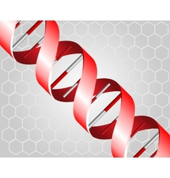 DNA backgound vector image