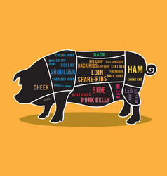 pork cuts map infographic vector image