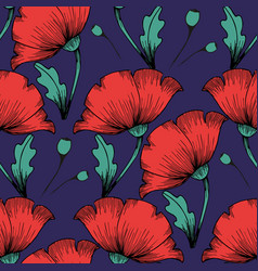 Red poppies hand drawing seamless colorful vector