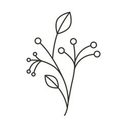 Silhouette ramifications tree with stem and vector