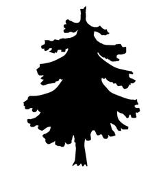Spruce vector