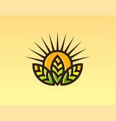 Sun leaf logo design vector