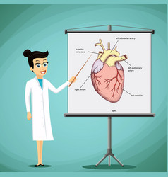 doctor shows on a blackboard image with a human vector image
