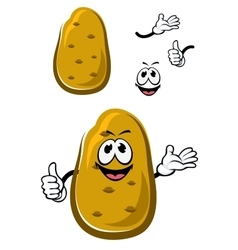Cartoon fresh brown potato vegetable vector image
