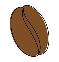 Coffee bean natural vector